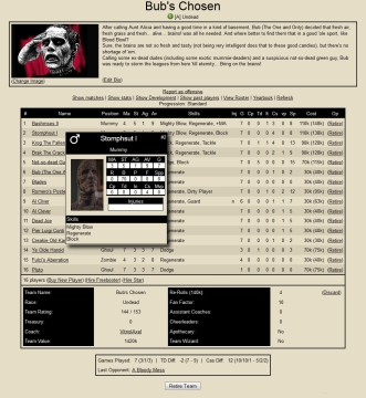"""La página permite además personalizar tus equipos y jugadores con imágenes. En imagen, mi querido equipo """"Los Elegidos de Bub"""""""